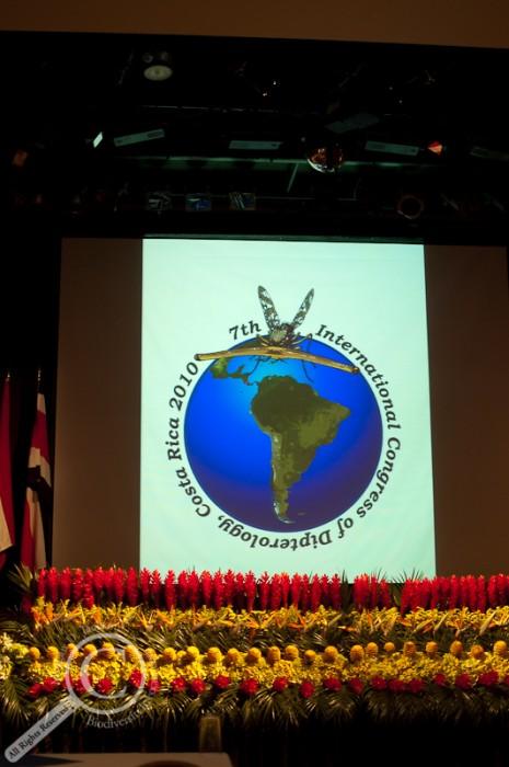 ICD7 Logo
