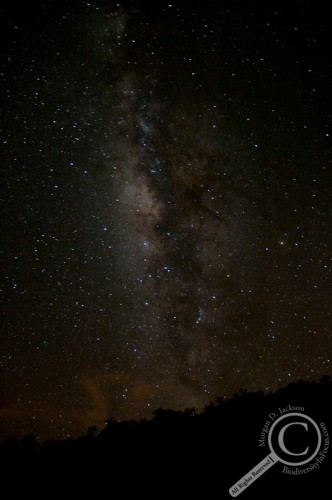 Milky Way Galaxy over the jungles of Costa Rica