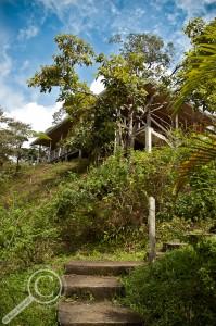 El Copal Reserve Stairway