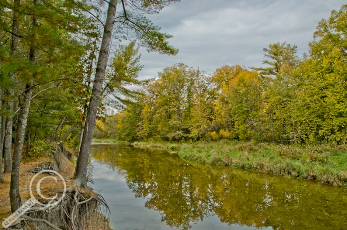 Tone Mapped image of a river in Ontario Canada