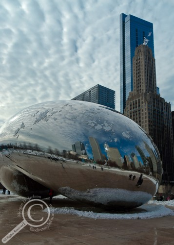 The Cloud Gate statue providing a window through the clouds Chicago Illinois