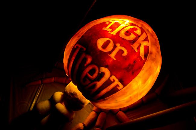 Tick pumpkin Jack-O-Lantern
