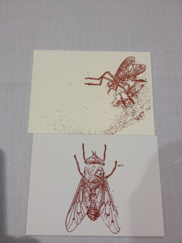 Fly greeting cards from Virginia Tech