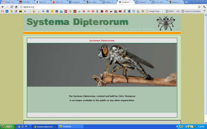 Home page for Systema Dipterorum as of February 16 2011