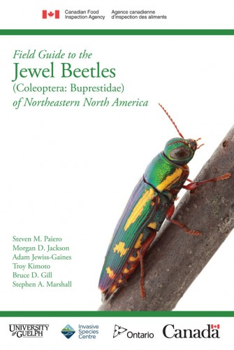 Cover of Field Guide to the Jewel Beetles of Northeastern North America