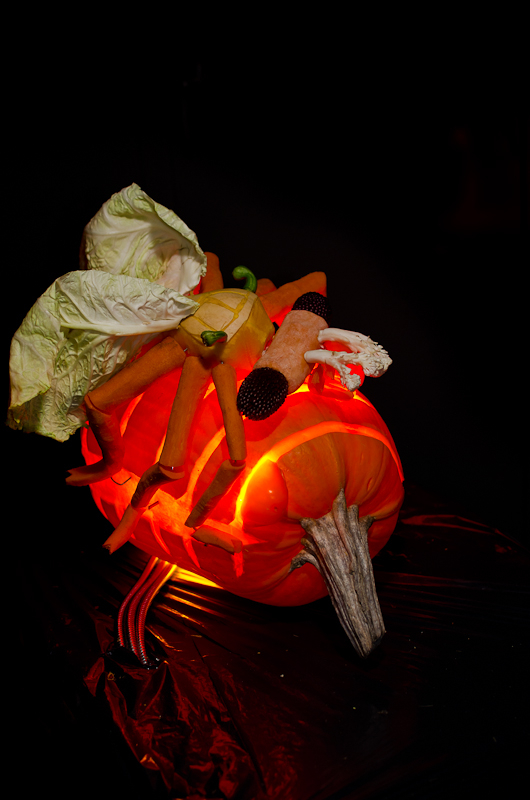That pumpkin wasp doesn't stand a chance with a Strepsiptera salad hanging around -- Ent-O-Lantern 2013